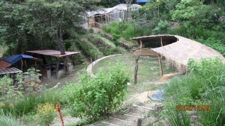 ll.2015 Circle,lower terraces, greenhouse with tomatoes & peppers./ Circulo, terrazas bajo, inverdadero con tomates y pimientas.