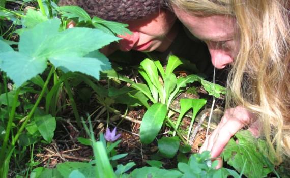 GardenLookSeedlingsGirl